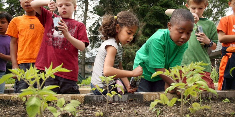 First and second grade students from Oakdale Christian School work to loosen plants from the plastic bottles they planted them in from seeds at Fuller Avenue Christian Reformed Church. The church parking lot is hosting a an urban garden. (Jessica Scott | The Grand Rapids Press)
