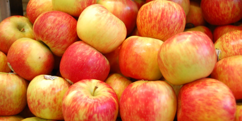 a-guide-to-fall-apples-by-greenblender-gala