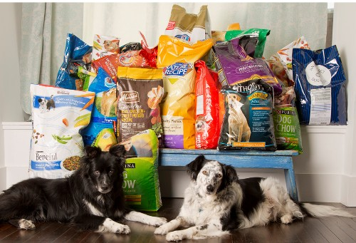 dog-day-pile-of-food